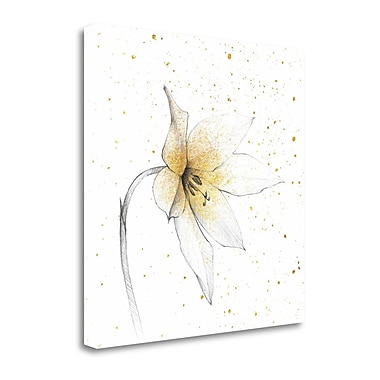 Tangletown Fine Art 'Gilded Graphite Floral VIII' Graphic Art Print on Canvas; 30'' H x 30'' W