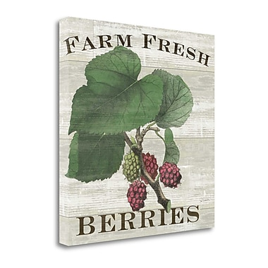 Tangletown Fine Art 'Farm Fresh Raspberries' by Sue Schlabach Graphic Art on Wrapped Canvas