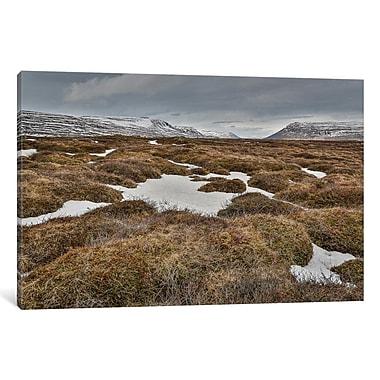 Ebern Designs 'Highland Landscape, Bardardalur, Iceland' Photographic Print on Wrapped Canvas