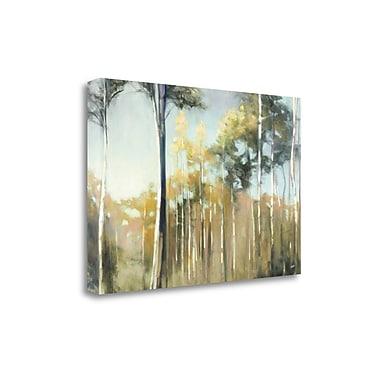 Tangletown Fine Art 'Aspen Reverie' Print on Canvas; 32'' H x 48'' W