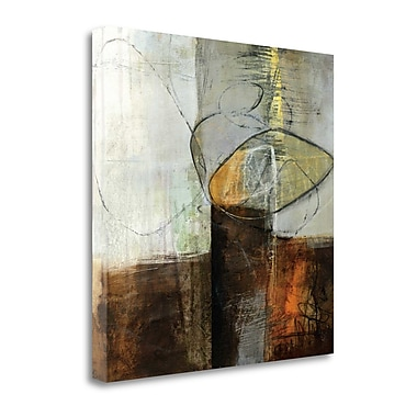 Tangletown Fine Art 'Abstract Pebble IV' by Jane Davies Painting Print on Wrapped Canvas