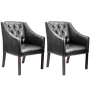 Darby Home Co Solid Armchair (Set of 2)