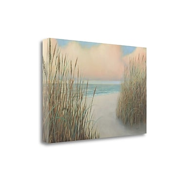 Tangletown Fine Art 'Beach Trail I' by James Wiens Painting Print on Wrapped Canvas; 23'' H x 34'' W