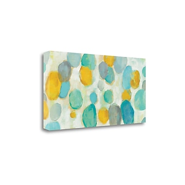 Tangletown Fine Art 'Painted Pebbles' by Silvia Vassileva Painting Print on Wrapped Canvas