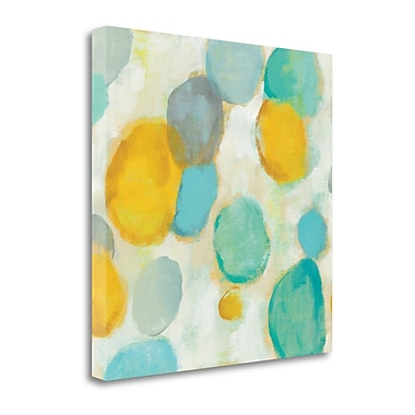 Tangletown Fine Art 'Painted Pebbles II' by Silvia Vassileva Painting Print on Wrapped Canvas