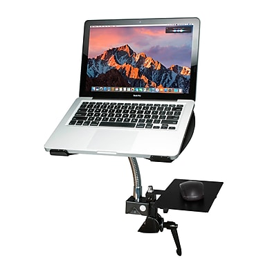 CTA Heavy-Duty Gooseneck Clamp Stand for Laptops (PAD-HGL)