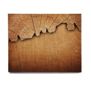 East Urban Home 'Natural Wood' Graphic Art Print on Wood