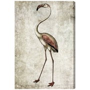 Bayou Breeze 'Vintage Flamingo' Rectangle Painting Print on Canvas; 45'' H x 30'' W x 1.5'' D