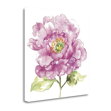 Tangletown Fine Art 'Water Flower I' by Wild Apple Portfolio Painting Print on Wrapped Canvas