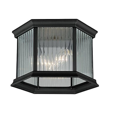 Alcott Hill Tennyson 2-Light Outdoor Flush Mount; Textured Black