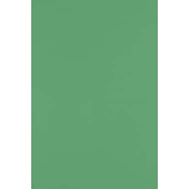 LUX Paper 12 x 18 inch Holiday Green, 500/Pack (1218-P-L17-500)
