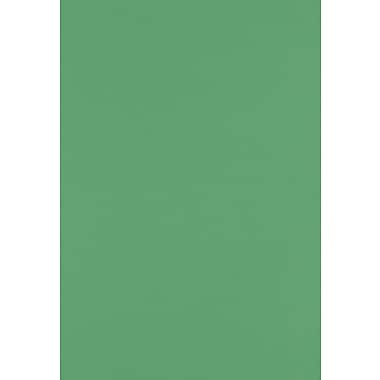 LUX Cardstock 13 x 19 inch Holiday Green, 500/Pack (1319-C-L17-500)