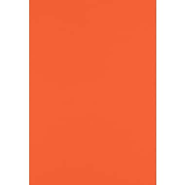 LUX Paper 13 x 19 inch, Tangerine, 250/Pack (1319-P-112-250)
