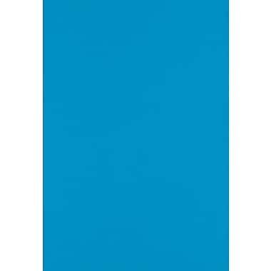 LUX Paper 13 x 19 inch Pool, 1000/Pack (1319-P-102-1000)