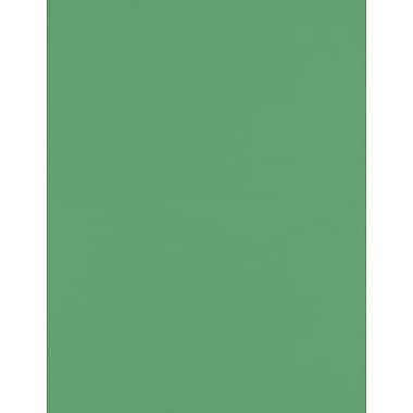 LUX Paper 8.5 x 11 inch, Holiday Green, 250/Pack (81211-P-L17-250)