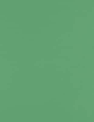 Lux Paper 8.5 x 11 inch 80 lbs. Holiday Green 500/Pack