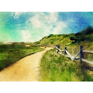 Red Barrel Studio 'Great Island Dune Walk' Graphic Art Print on Canvas