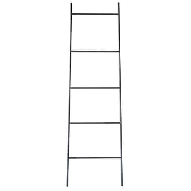 17 Stories Contemporary Iron Ladder