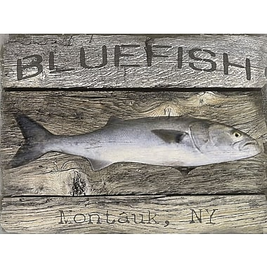 Breakwater Bay 'Bluefish' Graphic Art Print on Canvas