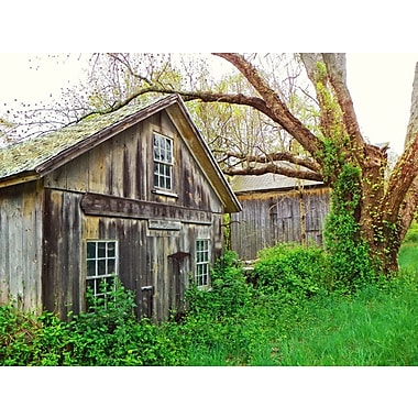 Loon Peak 'Early Dawn Farm' Photographic Print on Canvas