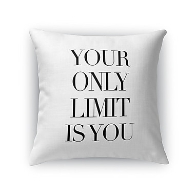 Red Barrel Studio Camara Only Limit Indoor/Outdoor Throw Pillow; 24'' H x 24'' W x 8'' D