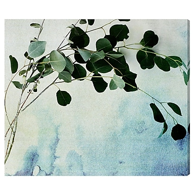 Ivy Bronx 'Cascade' Photographic Print on Wrapped Canvas; 36'' H x 42'' W x 1.5'' D