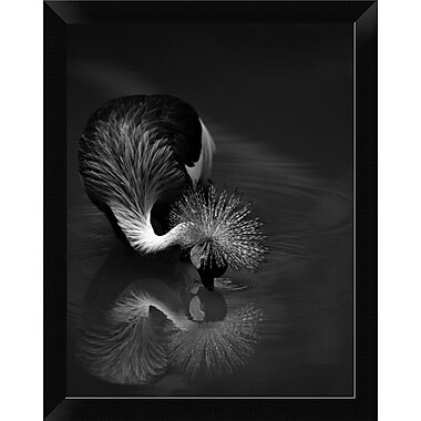 East Urban Home 'The Reflection' Framed Graphic Art Print; 16'' H x 12'' W