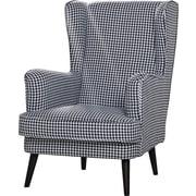 Alcott Hill Kleinman Wingback Chair