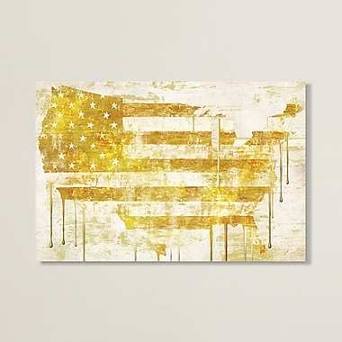 Williston Forge 'American Dream I' Graphic Art on Wrapped Canvas; 26'' H x 40'' W x 0.75'' D