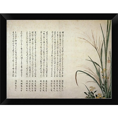 East Urban Home 'Asters and Susuki Grass 1805' Framed Graphic Art Print; 9'' H x 12'' W