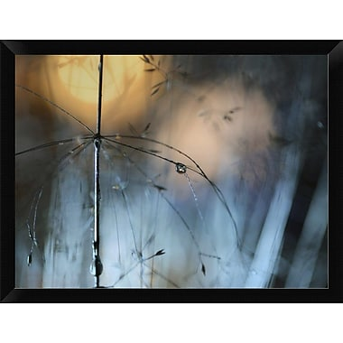 East Urban Home 'Almost Dark' Framed Graphic Art Print; 12'' H x 16'' W