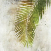 Bay Isle Home 'Palm Leaf Green' by Joshua Acrylic Painting Print on Wrapped Canvas