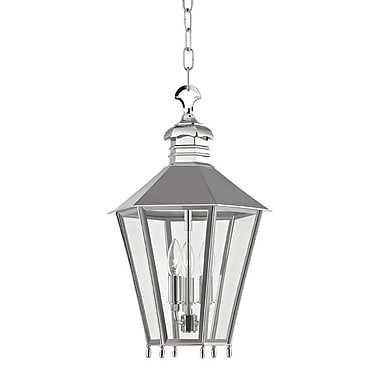 Darby Home Co Ericson 3-Light Outdoor Hanging Lantern; Polished Nickel