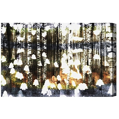 Ivy Bronx 'Birch Land' Graphic Art on Wrapped Canvas; 40'' H x 60'' W