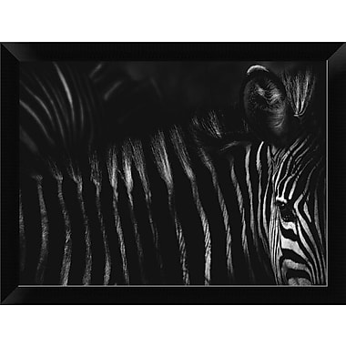 East Urban Home 'Untitled' Framed Photographic Print; 8.76'' H x 12'' W