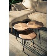 Corrigan Studio Kelvin 3 Piece Nesting Tables