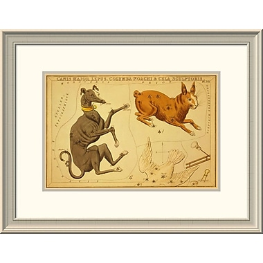 East Urban Home 'Canis Major, Lepus, Columba Noachi & Cela Sculptoris, 1825' Framed Print