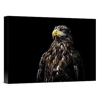 Global Gallery 'Ego' by Christian Lechtenfeld Photographic Print on Wrapped Canvas