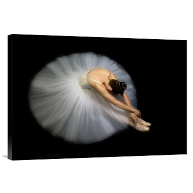 Global Gallery 'Elegance' by Pauline Pentony Ba Photographic Print on Wrapped Canvas