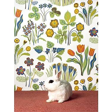Harriet Bee 'Bunny' Photographic Print