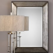 Everly Quinn Traditional Rectangle Framed Accent Mirror