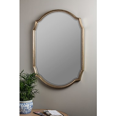 Darby Home Co Contemporary Wall Mount Mirror
