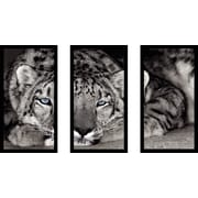 East Urban Home 'Snow Leopard Sanctuary' Framed Photographic Print Multi-Piece Image on Glass