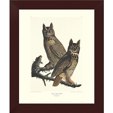 East Urban Home 'Great Horned Owl' Framed Graphic Art Print; 14'' H x 11.6'' W