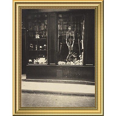 East Urban Home 'Zoologist's Shop' Framed Photographic Print; 14'' H x 11'' W