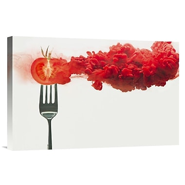 Global Gallery 'Disintegrated Tomato' by Dina Belenko Graphic Art on Wrapped Canvas