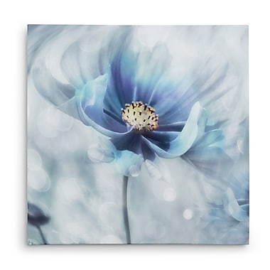 Winston Porter 'Feeling of Blue I' Graphic Art Print on Wrapped Canvas; 16'' H x 16'' W