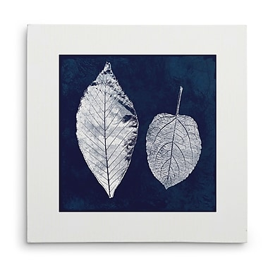 Breakwater Bay 'Cyanotype Ash Leaves' Graphic Art Print on Wrapped Canvas; 32'' H x 32'' W
