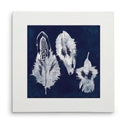 Breakwater Bay 'Cyanotype Feather I' Graphic Art Print on Wrapped Canvas; 16'' H x 16'' W