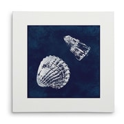 Breakwater Bay 'Cyanotype Shells I' Graphic Art Print on Wrapped Canvas; 40'' H x 40'' W